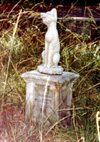 Old Pet Cemetery - Miss Kitty